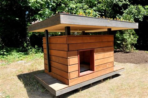 cool dog houses now that is a cool dog house snuggly pinterest