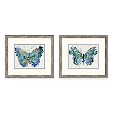 framed giclee watercolor butterfly wall art collection
