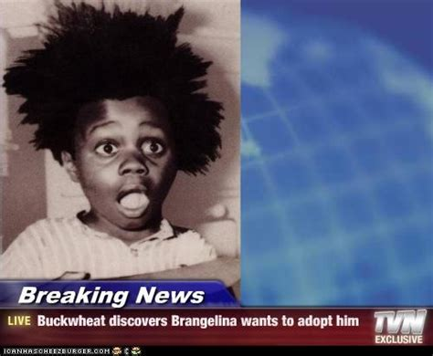 Buckwheat Meme - breaking news buckwheat discovers brangelina wants to