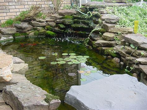 small backyard fish ponds exteriors fish pond designs easy koi ideas home and