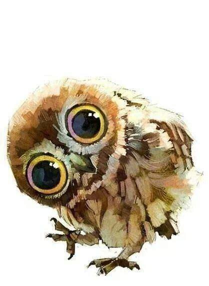 watercolor owl tutorial 37 best watercolor birds tutorials images on pinterest
