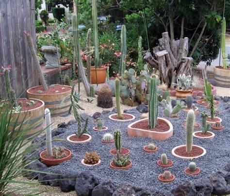 eccezionale Piante Da Giardino Economiche #1: giardino-piante-grasse_NG2.jpg