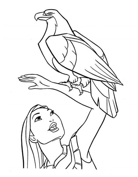 coloring book producer pocahontas drawing disney search results disney