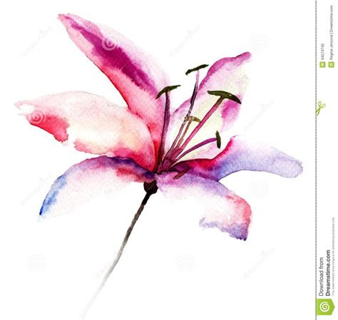 watercolor lily tattoo 17 best ideas about watercolor flower tattoos on