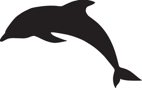 dolphin template pix for gt dolphin stencil printable cliparts co