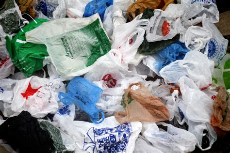 The New Im Not A Plastic Bag Says Plastic Aint My Bag by Don T Single Out Single Use Bags The Telescope