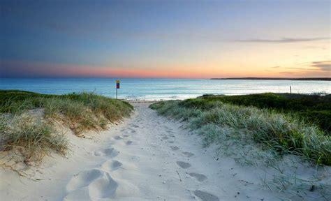 the ten best beaches in sydney concrete playground sydney