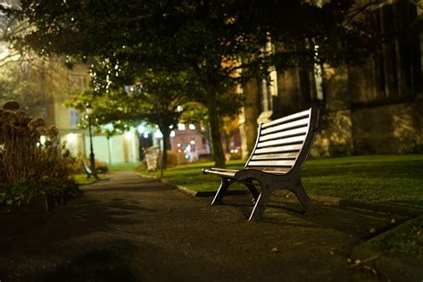 bench at night free photo bench night park city free image on