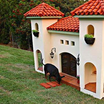 popular house dogs the best dog house rumble