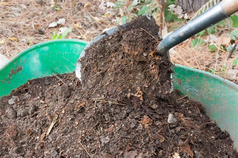 Fireplace Ashes In Compost gardening uses for fireplace ashes the at fireplacemall