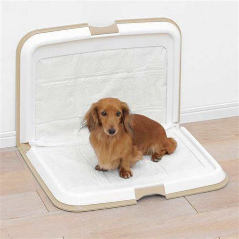 puppy pad puppy pads in stock now petplanet co uk