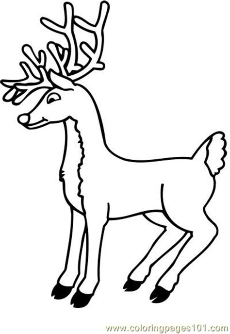 coloring pages deer rudolph deer skull pages coloring pages