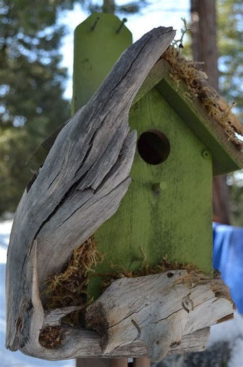 unique bird houses unique birdhouse in eden green