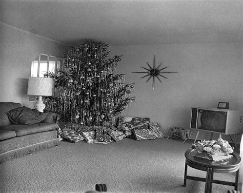 tree in living room vitro nasu 187 archive 187 tree in a living room by