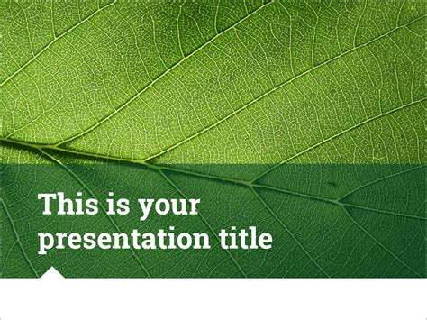 this is your template inspirational free presentation templates