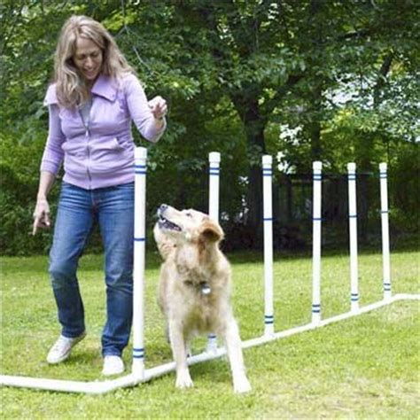 Backyard Agility Course by 10 Best Images About Khalupi On Obstacle