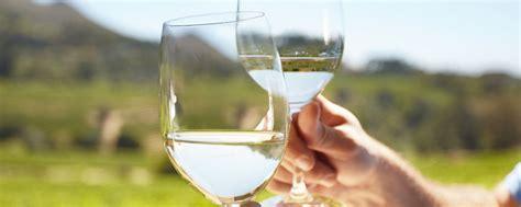 immagini bicchieri brindisi bicchieri brindisi png idee di immagine di casa