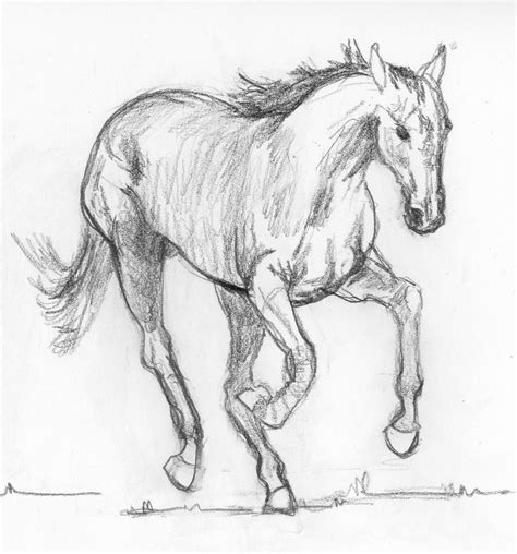 Sketches Horses frabjous musings sketch 26