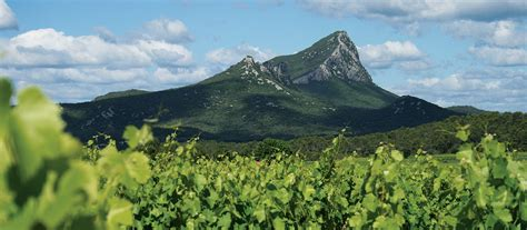 pic of ch 226 teau l euzi 232 re pic st loup wines home