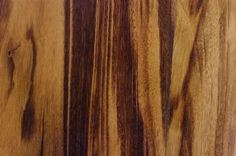 brazilian cherry brazilian cherry bamboo floors