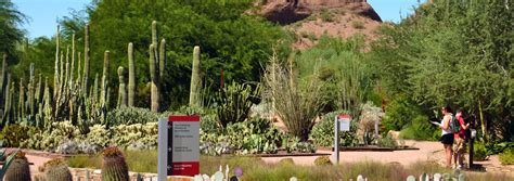 Botanical Gardens Scottsdale by A Grand Time In Greater Notable Travels