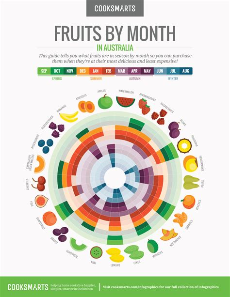 month by month a infographics cook smarts
