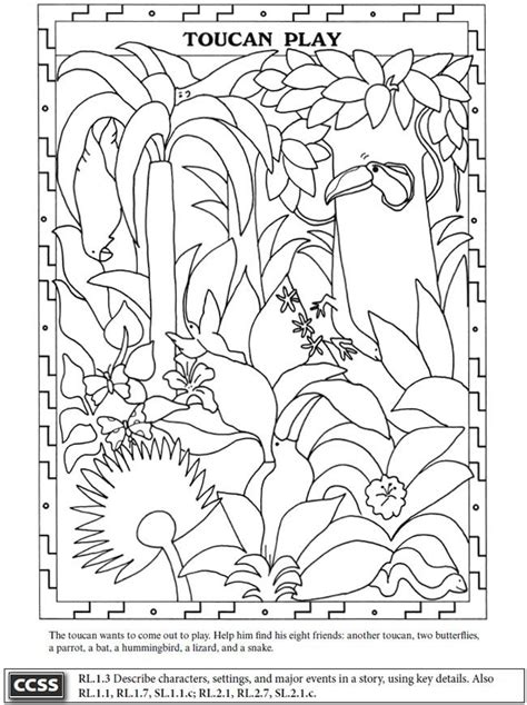 rainforest animals coloring pages preschool 76 best images about rain forest on pinterest jungle
