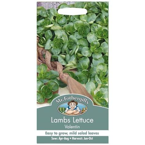 Benih Selada Lettuce Gem Mrfothergills Kemasan Asli jual benih lambs lettuce valentin 500 biji mr