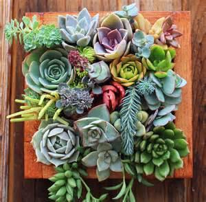 Etsy Garden Art - succulent wonderland vertical succulent garden noveltystreet