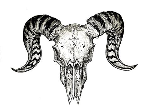ram skull on behance