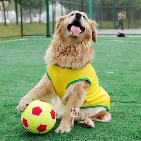 soccer for dogs 2015 genuine 8 5 felt kid pet big soccer football pet toys pet jpg