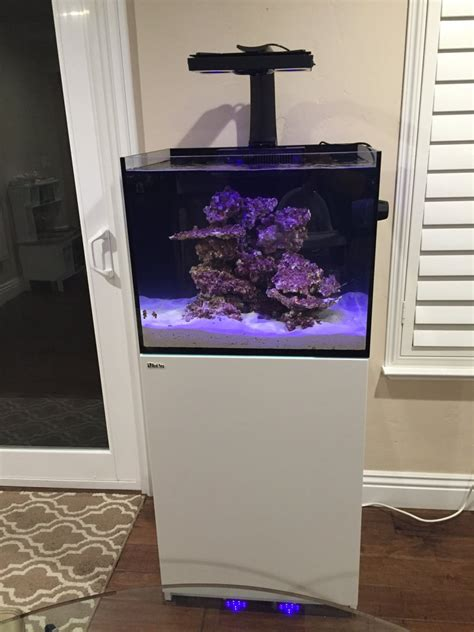 BCRIBS Red Sea Reefer 170 Build Thread   REEF2REEF
