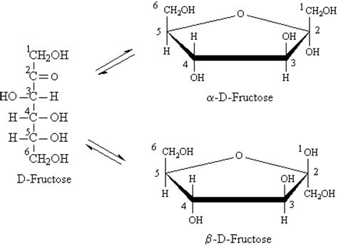 carbohydrates ring structure lactose ring structure ma