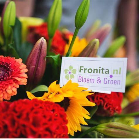 fronita bloem en groen fronita nl bloem groen home facebook