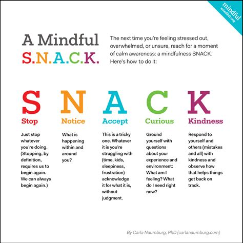 the mindful mind conquer overwhelm calm your mind reduce stress improve productivity create a of abundance books how to take a mindful s n a c k moment mindful