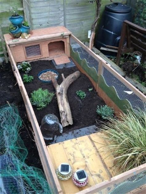 tortoise table for sale best 20 tortoise enclosure ideas on outdoor