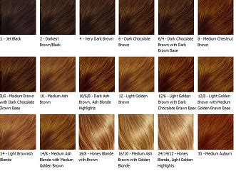American Hair Types by American Hair Color Chart Pictures 3