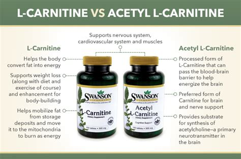 9 supplement combinations for weight loss image gallery l carnitine benefits