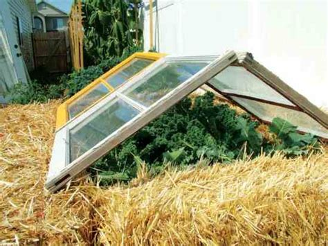 Cold Frame Gardening by Gardening Tips A Cold Frame To Build