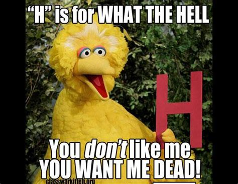 Meme Bird - sesame street meme oscar images