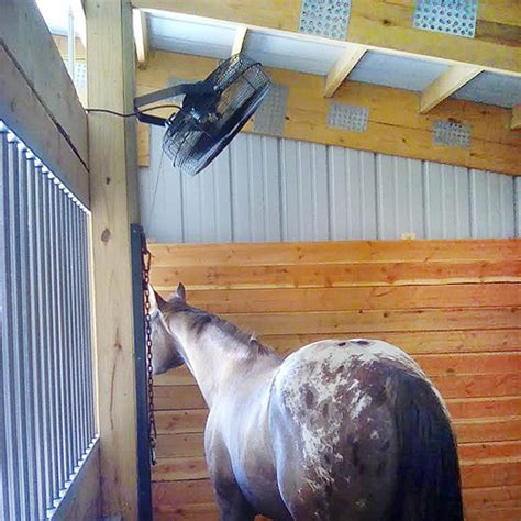 best horse stall fans horse stall fan mount ceiling fans and fans