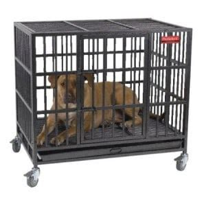 escapes from kennel best crate reviews 2018 big small cage kennel buying guide