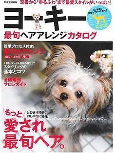 japanese style grooming yorkie japanese grooming on grooming styles grooming and poodle grooming