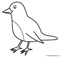 what color is a robin robin coloring page birds
