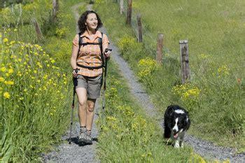 nackt zu haus hunde recht in der schweiz grosse kantonale unterschiede