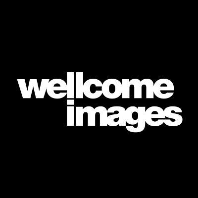 wellcome images wellcome images wellcomeimages twitter