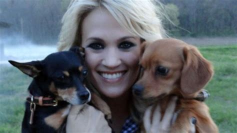 carrie underwood dogs his favorite picture of you carrie underwood version 1d preferences and requested