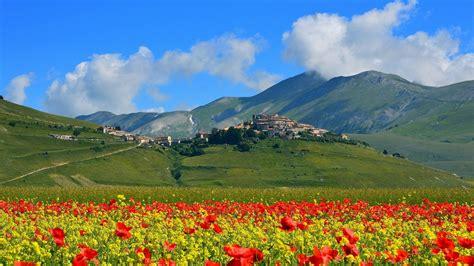 italia fiori sfondi alberi paesaggio montagne fiori italia