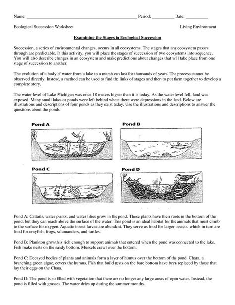 Ecosystems Worksheets by Science Worksheets Ecosystem Biology Worksheet Get Now