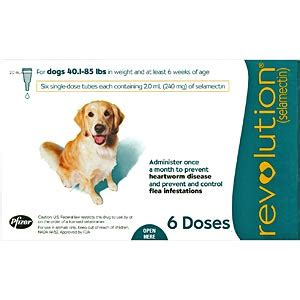 heartworm revolution dogs for revolution for dogs 40 85 lbs 6 pack teal vetdepot